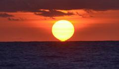 太陽は生命の源